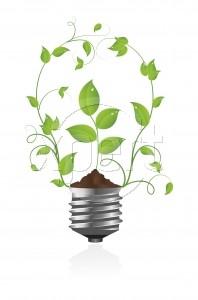 lightbulb_plant